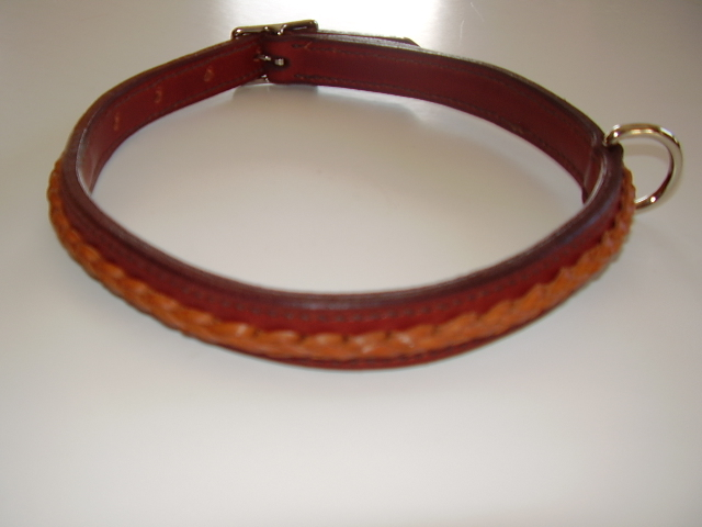 Dog neck collar